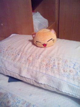 Gattopalla si è appropriato del cuscino! Dice che, da ora in poi, solo lui potrà dormirci!