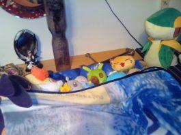Dopo averli fatti tancare ben bene, finalmente Snivy riesce a convincere tutti i piccoli a mettersi a letto. Che faticata!